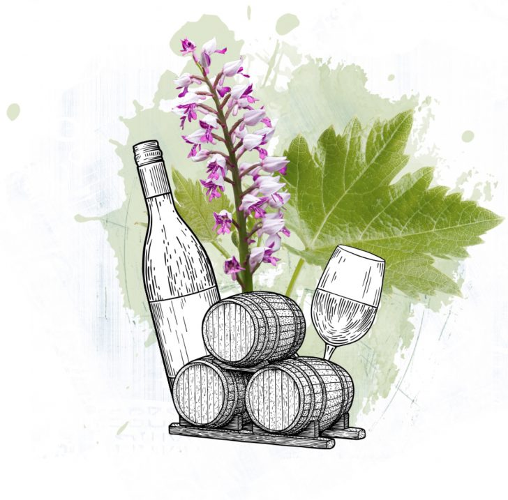 Splash WGB Flasche Weinfass